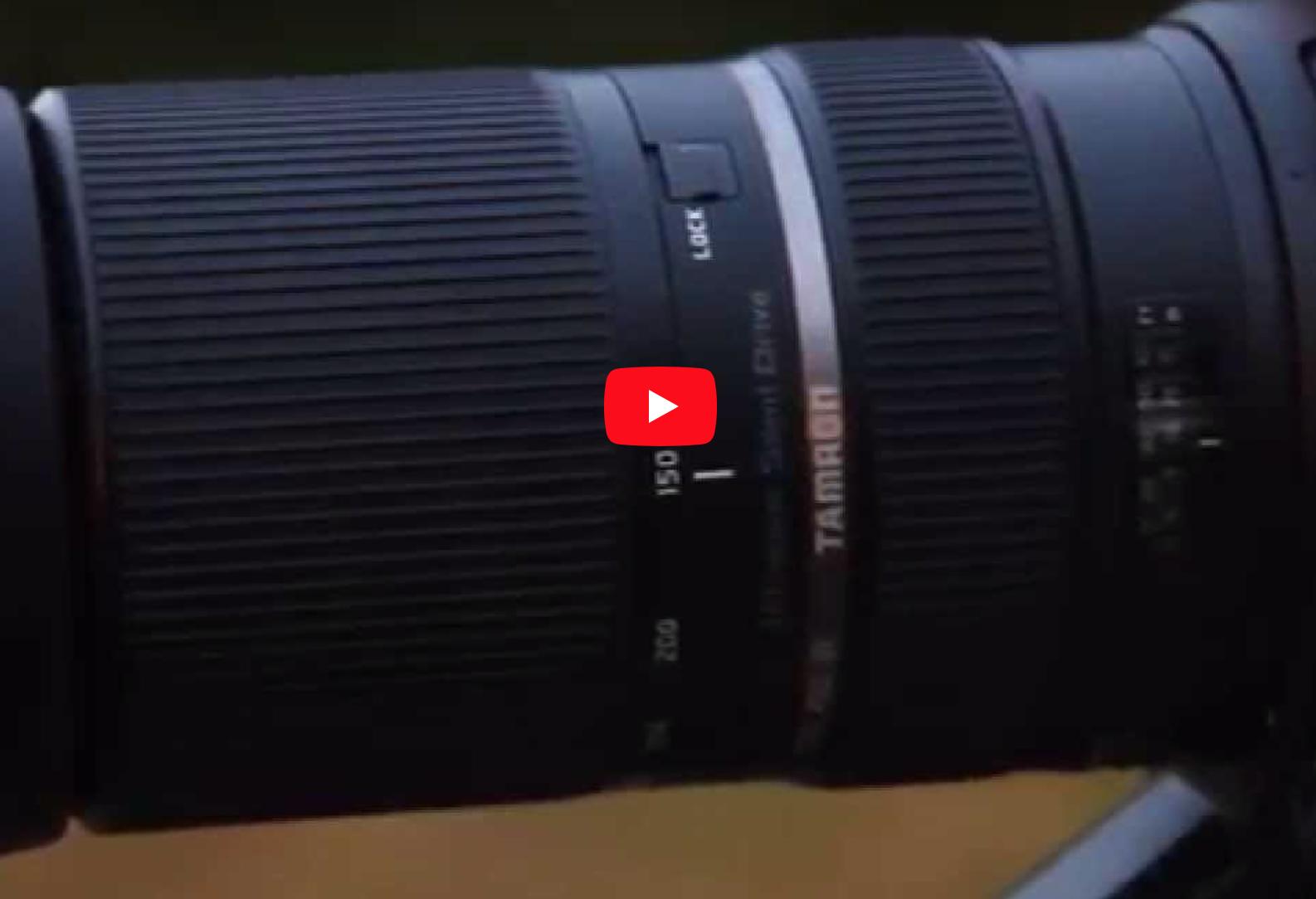 A Closer Look at the Tamron SP 150-600mm Di VC USD [Model A011]